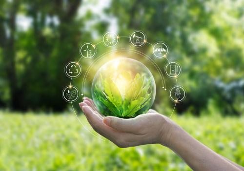 Wie nachhaltig denkt Österreich Bio